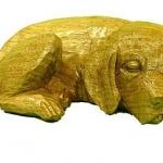 Golden Retreiver 2
